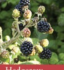 Hedgerow -- River Cottage Handbook No. 7 by John Wright