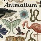 Animalium – Jenny Broom