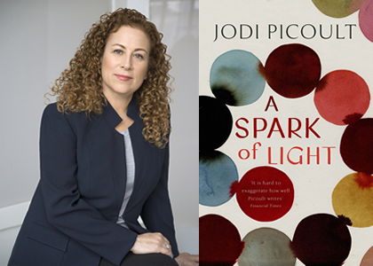 Image result for jodi picoult a spark of light