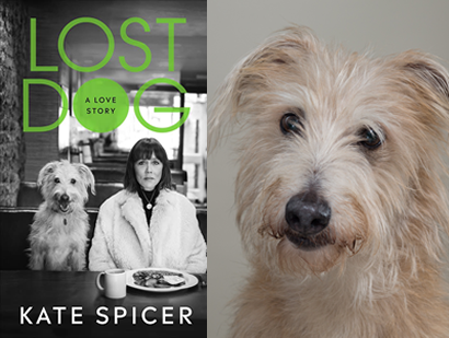 Kate Spicer – Lost Dog