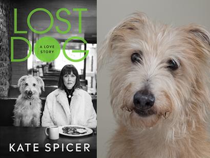 Kate Spicer – Lost Dog